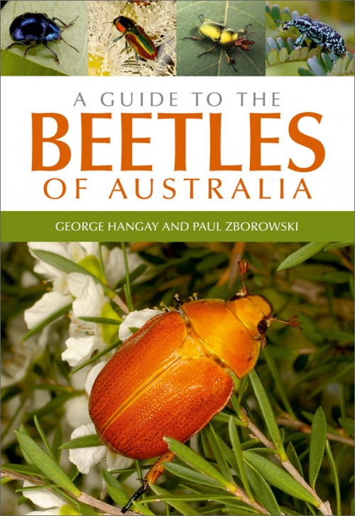 Guide to Beetles