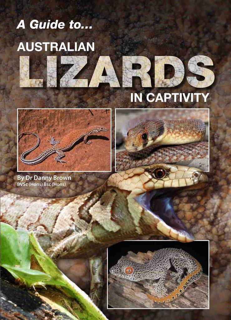 Australian Monitors In Captivity (A Guide to)