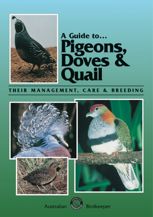 Pigeons, Doves and Quail